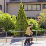 Com cuidar a una persona gran a casa