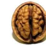 alimentos para mejorar la memoria